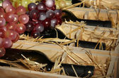 Wooden case with wine bottles close up — Stock Photo