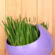 Green grass in decorative pot on wooden background - Foto Stock