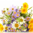 Beautiful bouquet of bright wildflowers, isolated on white — Stock Photo #24702609