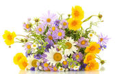 Beautiful bouquet of bright wildflowers, isolated on white — Stock Photo