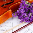 Classical violin on notes - Stock Photo