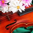 Classical violin on fabric background - Stock Photo