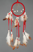 Beautiful dream catcher on grey background — Stock Photo