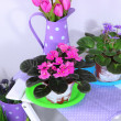 Decorative elements and flowers on table - Stock Photo