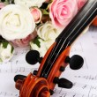 Classical violin  with flowers on notes - Photo