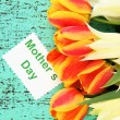 Beautiful white and orange tulips on color wooden background — Stock Photo #24848483
