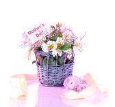 Bouquet of flowers in basket on pink background — Stock Photo