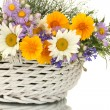 Stock Photo: Beautiful bouquet of bright wildflowers in basket, isolated on white