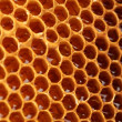 Royalty-Free Stock Photo: Yellow beautiful honeycomb with honey, background