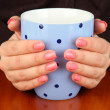 Hands holding mug of hot drink, close-up — Stock Photo