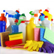 Different kinds of house cleaners and colorful sponges, gloves isolated on white — Stock Photo #24939635