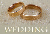 Snubní prsteny na světlé pozadí — Stock fotografie