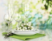 Serving dishes and snowdrops on natural background — Stock Photo