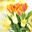 Beautiful white and orange tulips on bright background — Stock Photo #24941461