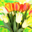 Beautiful white and orange tulips on bright background — Stock Photo