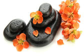 Spa stones and flowers isolated on white — 图库照片