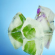 Ice cubes with flowers and herbs in glass, on blue background — Stock Photo