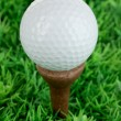 Golf ball on grass close up — Stock Photo #25036723