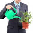 Young businessman watering pot isolated on white — Stock Photo #25037749