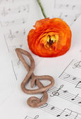 Treble clef and flower on musical background — Stock Photo