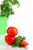 Fresh tomatoes and young plant in bucket isolated on white — Stock Photo
