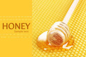 Yellow beautiful honeycomb and wooden honey dipper with honey — Stock Photo