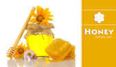 Jar of honey and honeycombs isolated on white — Stock Photo