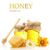Jars of honey and honeycombs isolated on white — Stock Photo