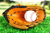 Baseball glove and ball on grass in park — 图库照片