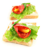 Salami rolls with paprika pieces inside, on roasted bread, isolated on white — Stok fotoğraf