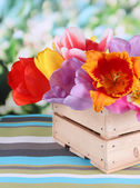 Beautiful tulips in bouquet in wooden box on table on bright background — Stock Photo