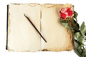 Open old book, rose and ink pen isolated on white — Stock Photo
