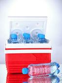 Podróże lodówka z butelki wody i lodu kostek, na szarym tle — Zdjęcie stockowe