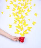 Papier gelbe schmetterlinge fliegen aus tasse — Stockfoto