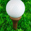 Golf ball on grass close up — Stock Photo #25325629