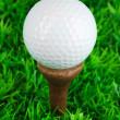 Golf ball on grass close up — Stock Photo