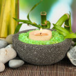 Stock Photo: Still life with green bamboo plant and stones, on bamboo mat, on bright background