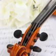 Classical violin  with flowers on notes - Stok fotoğraf