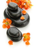 Spa stones and flowers isolated on white — Stock Photo