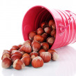 Overturned bucket with hazelnuts isolated on white — Stock Photo