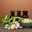 Still life with green bamboo plant and stones, on bamboo mat on color background — Стоковая фотография