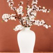 Beautiful blooming branches in vase on pink background - ストック写真