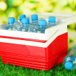 Picnic refrigerator with bottles of water and ice cubes on grass - Stock Photo