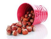 Overturned bucket with hazelnuts isolated on white — Stock Photo