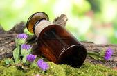 Temel petrol üzerinde taş ve ağaç kabuğu ile şişe yakın çekim — Stok fotoğraf