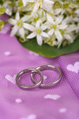 Beautiful wedding rings on purple background — Zdjęcie stockowe