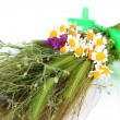 Stock Photo: Bouquet of wild flowers and herbs, isolated on white