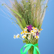 Stock Photo: Bouquet of wild flowers and herbs, on color background