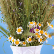 Stock Photo: Bouquet of wild flowers and herbs, in vase, on color background