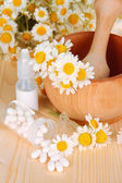 Medicine chamomile flowers on wooden table — Foto de Stock